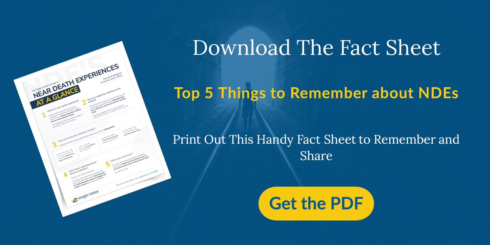 NDE-FACTSHEET-DOWNLOAD-PDF