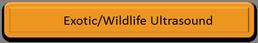 exotic ultrasound wildlife ultrasound elephant ultrasound rhino ultrasound