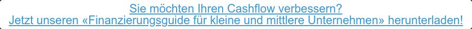 Sie möchten Ihren Cashflow verbessern? Jetzt unseren «Finanzierungsguide für kleine und mittlere Unternehmen»  herunterladen!