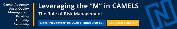 M in CAMELS risk management