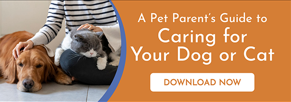 Download the Pet Parent's Guide to Caring for Your Dog or Cat