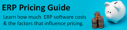 ERP Pricing Guide