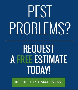 Pest problems? Request a free estimate today!