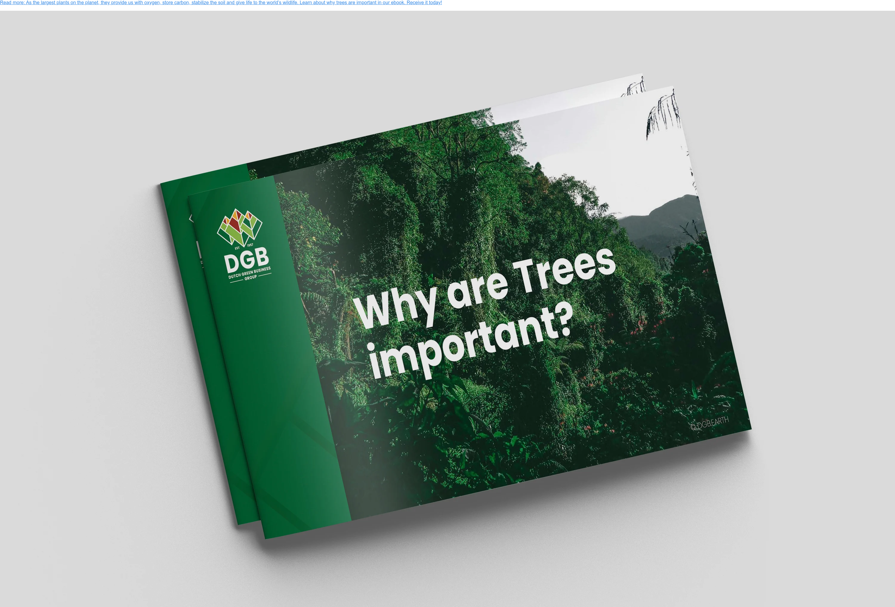 Read more: As the largest plants on the planet, they provide us with oxygen,  store carbon, stabilize the soil and give life to the world's wildlife. Learn  about why trees are important in our ebook. Receive it today!