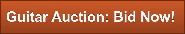Guitar Auction: Bid Now!