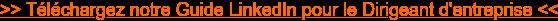 >> Téléchargez notre Guide LinkedIn pour le Dirigeant d'entreprise <<