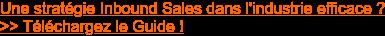 Une stratégie Inbound Sales dans l'industrie efficace ? >> Téléchargez le Guide !