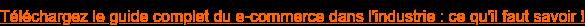 Téléchargez le guide complet du e-commercedans l'industrie : ce qu'il faut  savoir !