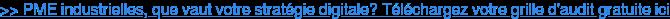 >> PME industrielles, que vaut votre stratégie digitale? Téléchargez votre  grille d'audit gratuite ici