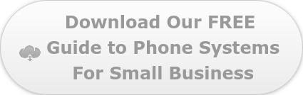 Download Our FREE  Guide to Business Phoens Systems For Small Business