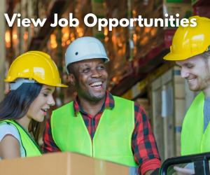 View Job Opportunities