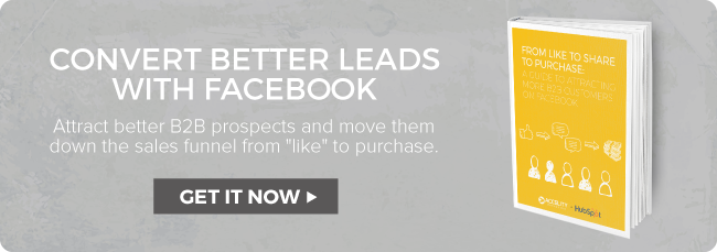 Guide to Attracting B2B Customers on FB ebook