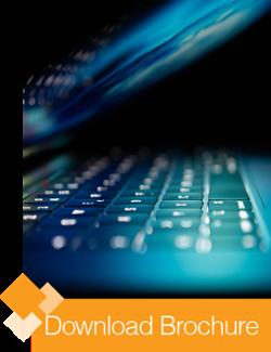 Download the CustomSecurity Brochure