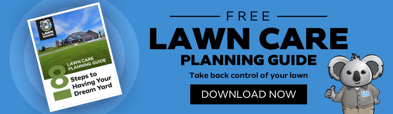 lawn care planning guide banner