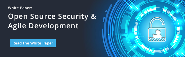 White Paper: Open Source Security & Agile Development