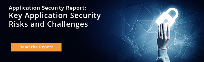 Key Risks & Challenges in Application Security 2016