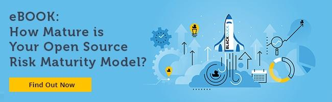 eBook: How Mature is Your Open Source Risk Maturity Model?
