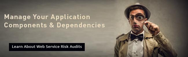 Black Duck Web Service Risk Audits