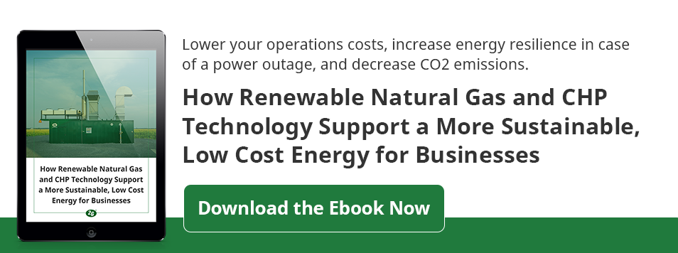 download the ebook on renewable natural gas and CHP