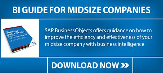 SAP-bi-guide
