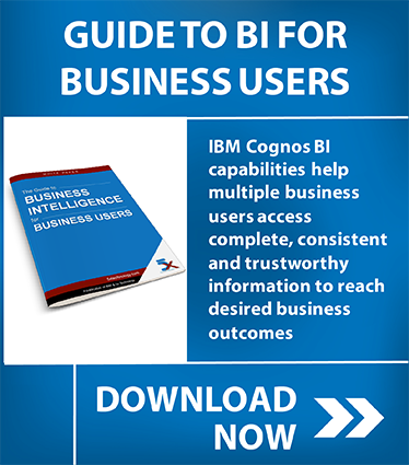 bi-business-users
