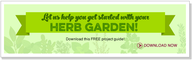 Let us help you get started with your Herb Garden!