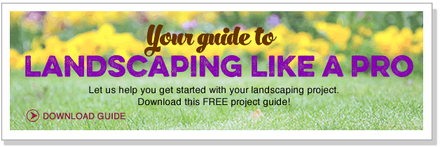 Your guide to landscaping like a pro!