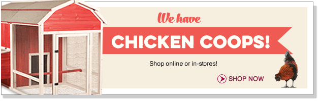 We have Chicken Coops! Shop online or in-stores!
