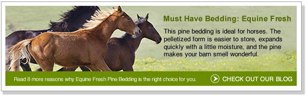 Must have bedding: Equine Fresh