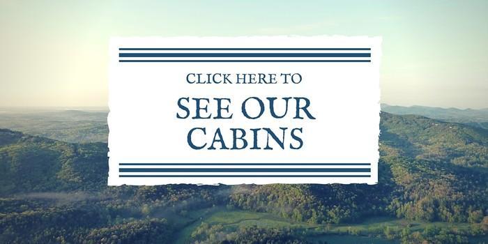 Rent Helen GA Cabin