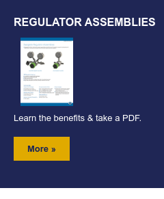 Regulator Assemblies  Learn the benefits & take a PDF.  More »