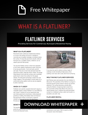 flatliner services whitepaper