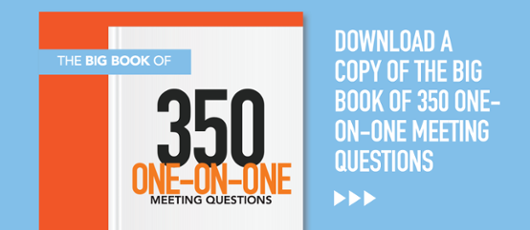 big book of one on one meeting questions